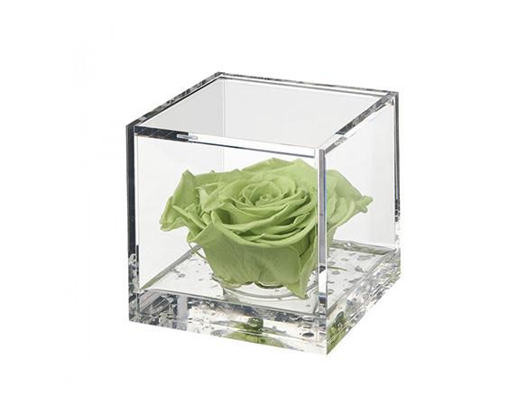 Flowercube Large Rosa Verde