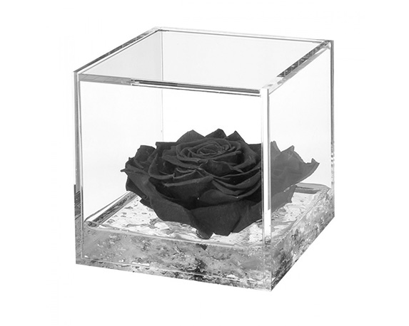 Flowercube Extra Large Rosa Nera