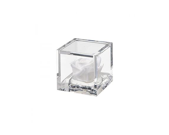 Miniflowercube Rosa Bianca