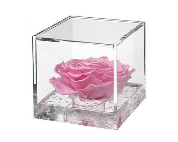 Flowercube Extra Large Rosa Rosa