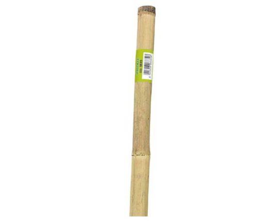 Canna Bamboo Spessa Naturale 210 Cm