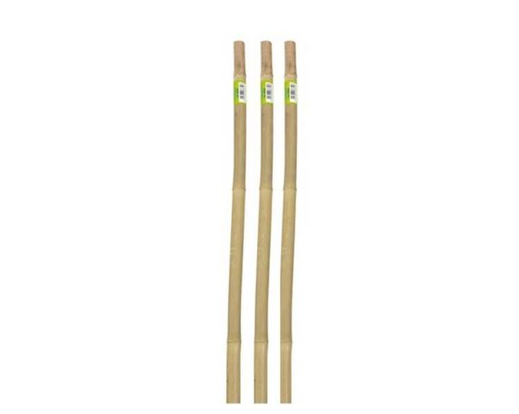 Canne Bamboo Naturali 180 Cm