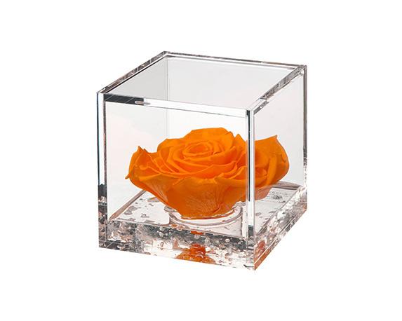 Flowercube Large Rosa Arancio