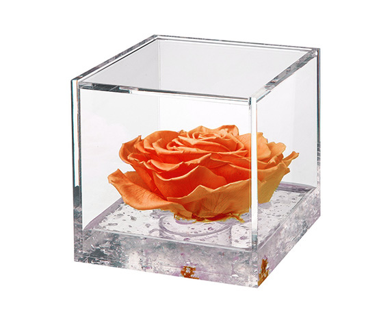 Flowercube Extra Large Rosa Arancio