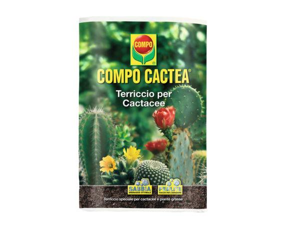 Terriccio Cactacee 5lt – Compo