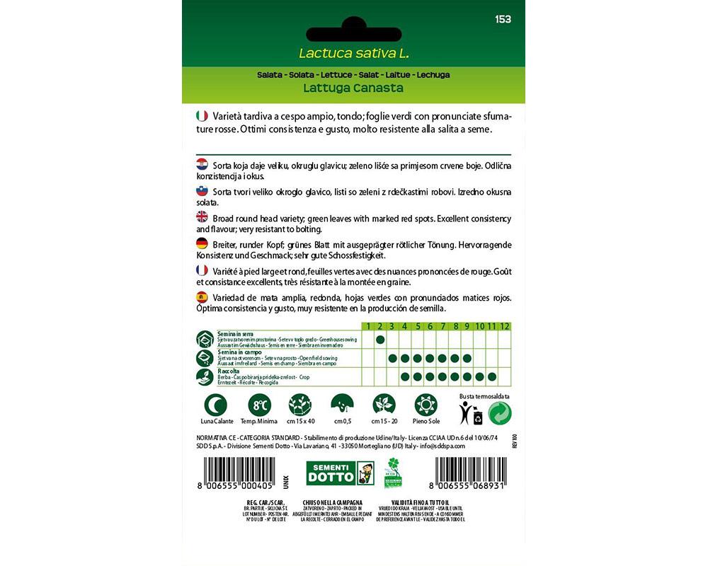 lattuga canasta ortaggio sementi dotto orto biologico bulbi e sementi giardinaggioi 1.jpg1  1