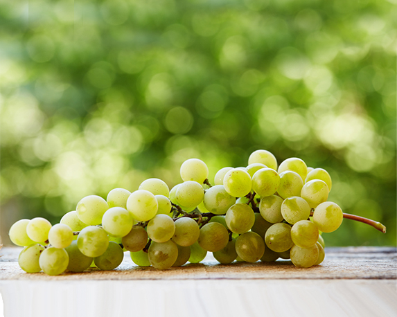 varietà uva da tavola 1