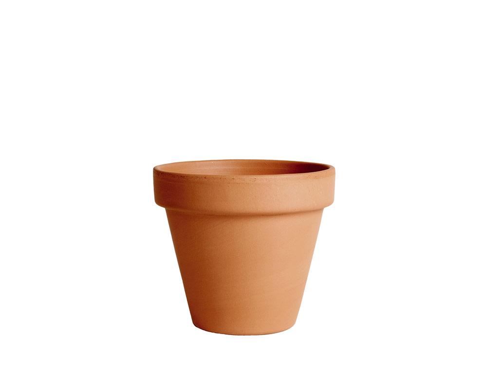 vaso terracotta classica standard 17cm corino bruna degrea vasi e coprivaso giardinaggio