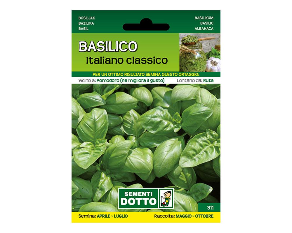 SEME BASILICO ITALICO CLASSICO SEMENTI DOTTO FROMNT