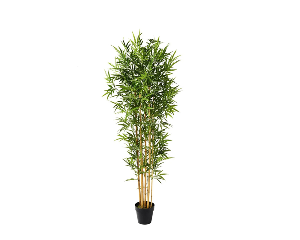 BAMBOO 155CM REAL TOUCH IN VASO 72532420