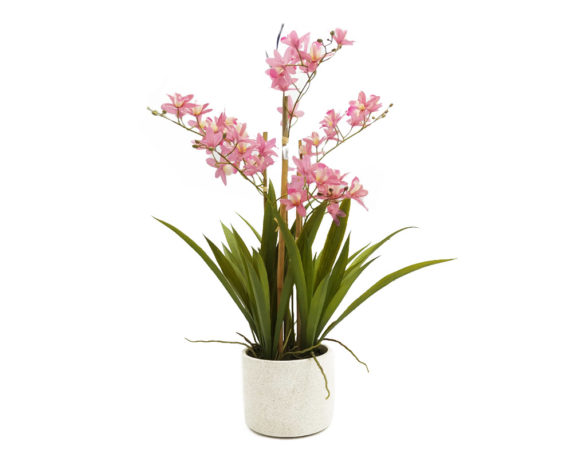 Orchidea Cymbidium Beauty Artificiale In Vaso H58