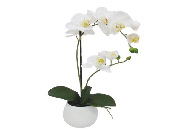 Orchidea Phalaenopsis Artificiale Bianco In Vaso H48
