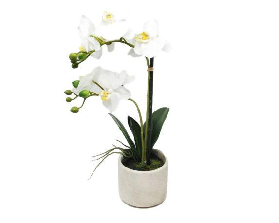 Orchidea Phalaenopsis Artificiale Bianco In Vaso H46