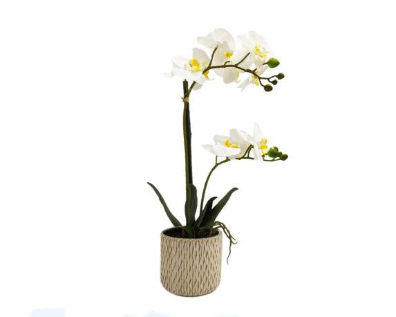 Orchidea Phalaenopsis Artificiale Bianco In Vaso Scanalato H56