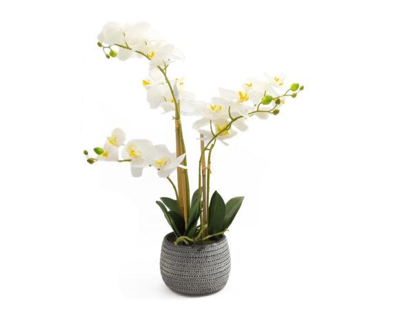 Orchidea Phalaenopsis Artificiale Bianco In Vaso Grigio H58