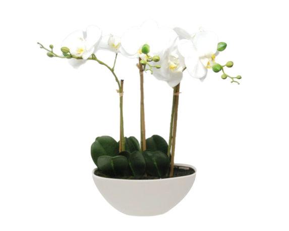 Orchidea Phalaenopsis Artificiale Bianco In Vaso Ovale H45