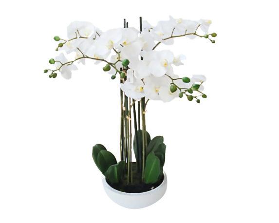 Orchidea Phalaenopsis Artificiale Bianco In Vaso H68