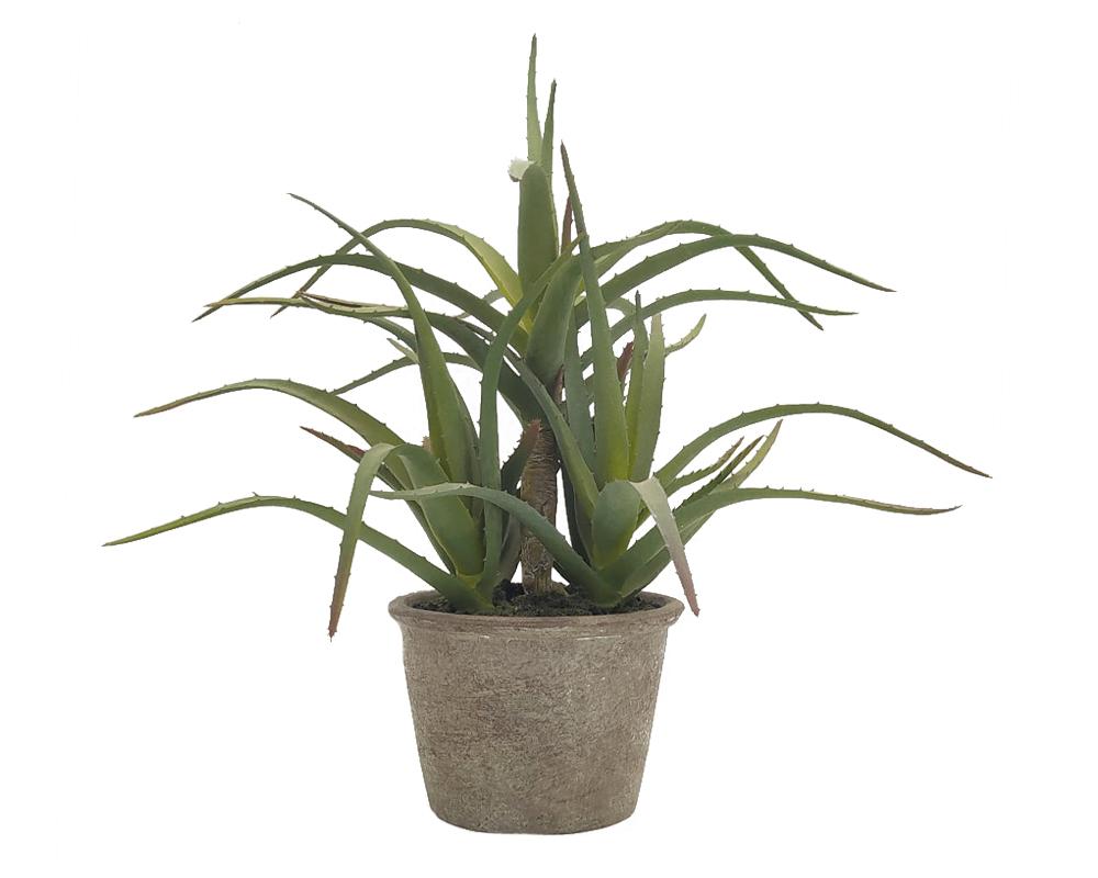 aloe vera artificiale in vaso h40 cm 72516792
